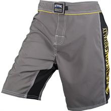 Dethrone Anticrown Grey Fight Shorts
